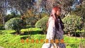 陈琳一首《你的柔情我永远不懂》旋律动听,歌声优雅