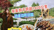 【Grace】34期vlog带着狗子跨越1300公里从北京回杭州,王羲之故居,鸡汤馄饨,临沂好吃好逛地方真不少(下集)