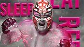 【WWE】布洛克莱斯纳 · 619雷尔 出场曲 混音