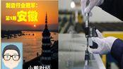中国经济看安徽,安徽的那些中国制造业冠军企业有多牛,合肥、芜湖、马鞍山等安徽企业有多强大!