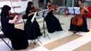 海南海口小提琴+弦乐四重奏(海口灵思传媒)