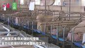 广西博白猪瘟疫情引关注 方春明率调研组到玉林市开展调研