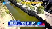 """寻找可游泳的河:慈溪观海卫镇(上)""""生态镇""""里的""""油漆河"""""""