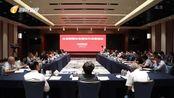 海南举办新媒体自媒体代表恳谈会 携手打造海南新闻舆论工作
