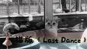 小橘猫版《Last Dance》