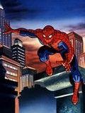 超级蜘蛛侠 TV版