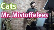 【萨克斯】Cats - Mr. Mistoffelees - Tenor Saxophone Cover