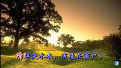 """《同从弟南斋玩月忆山阴崔少府》王昌龄 视频朗诵""""美人清江畔 是夜越吟苦""""-【古诗文视频朗诵】-不由自主教育"""