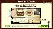 钟祥城市印象SOHO公寓小户型59.84平实景拍摄