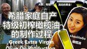 亲手采橄榄榨出顶级初榨橄榄油的全过程▎SELF PICKED OLIVE, EXTRA VIRGIN OLIVE OIL PRODUCTION