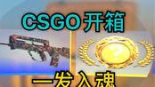 [CSGO开箱]用一把钥匙能开出来什么