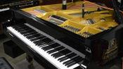 Clair de Lune C.A.Debussy 月光德彪西,拉斐尔raphael钢琴GR1