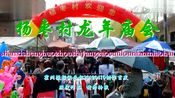 山西省霍州市杨枣村龙年庙会