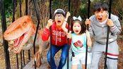 萌宝剧场!博拉姆和科南·多奇在森林中探险,发现了很多有趣的事