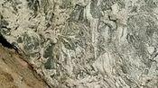 揭开山东省聊城市开发区广福刘石头真相,点石成金不再是神话