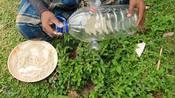 Bottle Fish Trap _ Amazing Boy Catch Fish With Plastic Bottle
