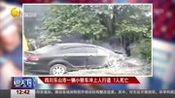 四川乐山市一辆小轿车冲上人行道 7人死亡