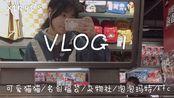 Xinyi's VLOG 1  放假前最后一个周末/可爱猫猫/名创优品/杂物社/泡泡玛特/一点点/kfc