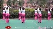 周思萍广场舞 - 大家一起来(正反面)