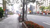 坐标深圳南山出门买些用品,网友:马路上有车吗?超市开了吗?