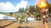 方舟生存进化:荒岛求生EP3,如何制作麻醉箭驯服三角龙