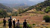 新《土地管理法》将实施,农村宅基地变更,这四个问题要先弄清