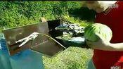 西瓜通上高压电的后果www.googleoso.cn