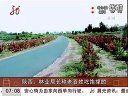 陕西:林业局长称老百姓吃饱撑的升降平台 www.chinayuansheng.com
