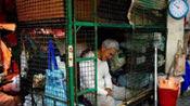 """为何香港人宁愿一辈子住在""""笼屋"""",也不愿来内地发展?看完恍然大悟"""