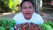 [Hagna]泰国吃播哈格纳-大血蛤-大扇贝
