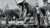 """为了人民健康丨1956年,这座江南古镇1.3万人打起了一场""""人蝇大战"""""""