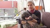 在濒死状态下奇迹存活的狗,什么样的人愿意为它如此付出?