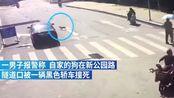 骑车遛狗遭碾压,狗主报警被判全责!