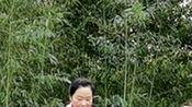 北京紫竹院广场舞,小表姐领舞《康巴情》真是美极了