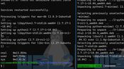 [Microsoft Developer] WSL2特性介绍 - 全新Linux子系统