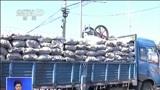 [共同关注]聚焦APEC:北京今起机动车单双号行驶