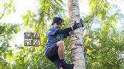 我们的征途田亮脱鞋赤手爬椰子树 麦迪娜险蹭破肚皮