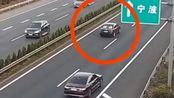 这种高速停车的就应该重罚,扣12分吊销驾驶证,群众们有同意的吗?!