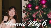 夏威夷Vlog 6| Maui的奇妙圣诞夜,和鲸鱼对话,与海龟共舞!