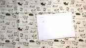 【写手帐的小白】手帐新手向指南:手帐本、笔、胶带、打印用纸、周边小物