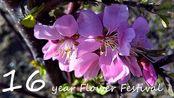 【FLS工程展示】十六年花祭.flp