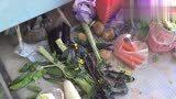 在武汉的日子是怎么过的,日夜颠倒,每天只吃一餐,家里快断粮了