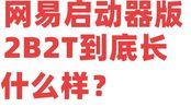 [凤梨]网易启动器的盗版2B2T到底是怎么样的?