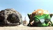 爆笑:癞蛤蟆提醒小蜥蜴伪装,注意老鹰,不料自己领了盒饭!