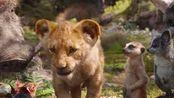 小辛巴吃毛毛虫长大,成为狮子王为父亲报仇