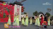 美丽乡村过大年走进南京六合 歌曲 茉莉花