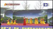"""湖北省第二届(荆州)园林博览会举行""""沙市区主题日""""活动"""