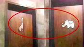 """公厕门上""""长颈鹿""""和""""大象"""",怎么区分男女?很多人都搞错了"""