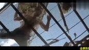 空中监狱,尼古拉斯凯奇和同伴联手对抗特种部队,很经典的一部电影