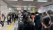 深圳布吉地铁站,早上8点高峰期,高峰到什么程度